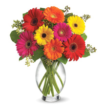 Gerbera Brights love Bouquet