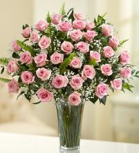 Ultimate Elegance? Premium Long Stem Pink Roses