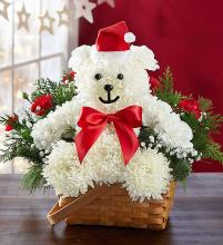 Very Merry Beary?