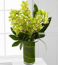 Luxury Orchid Bouquet