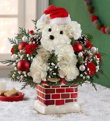 A Santa Paws hung by the chimney