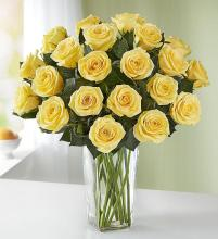 Yellow Roses, 24 Stems